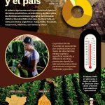 La Industria del Tabaco en Tucumán y el país
