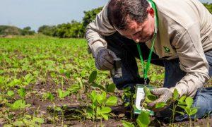 Jornada de capacitación para productores tabacaleros